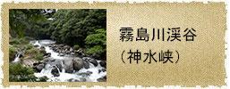 btn_sinsuikyo