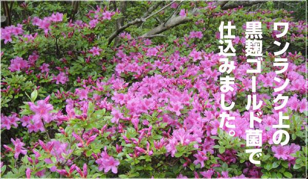 okukirisima_kanban