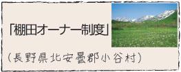 棚田オーナー制度 長野県小谷村