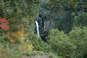 犬飼の滝(展望台から)