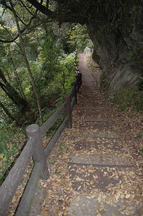 犬飼の滝へ 遊歩道