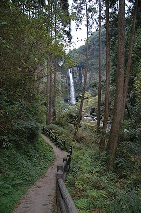 犬飼の滝 遊歩道から滝が見えてきます