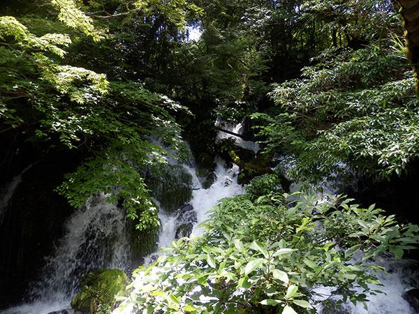 御手洗(みたらし)の滝
