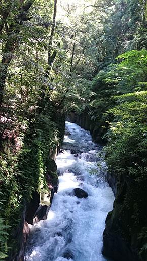 神水峡 (しんすいきょう) ~霧島川渓谷~