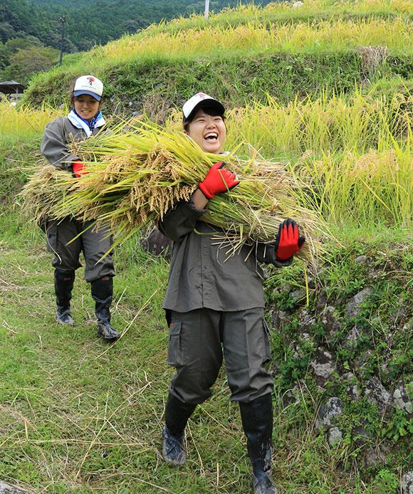 稲の香りに笑顔 今年も豊作