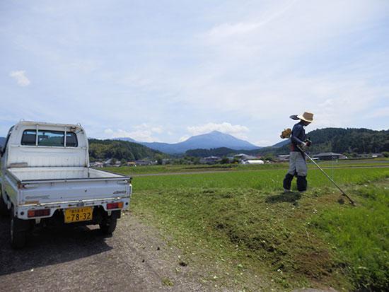 明るい農村 田んぼの草刈