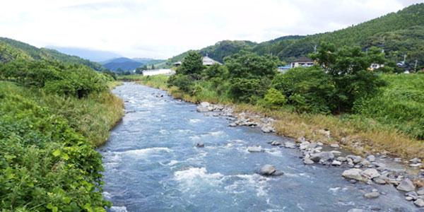 青々と流れる、霧島川。